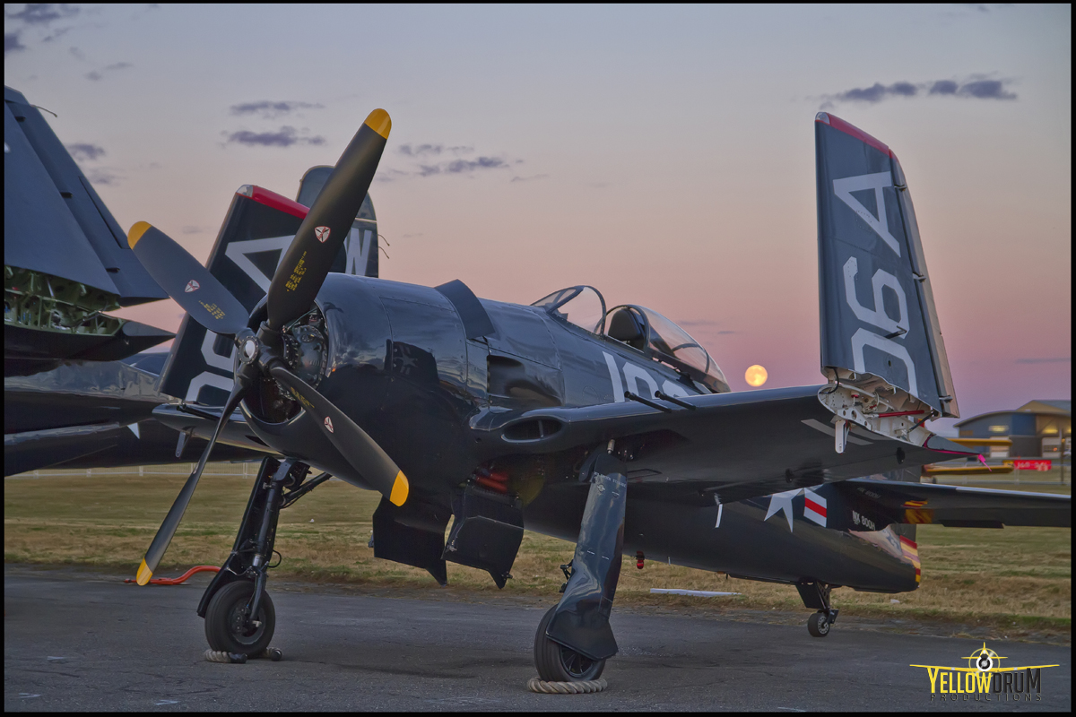 http://www.freedomfair.com/wp-content/uploads/2017/03/HFF-Bearcat-Picture.jpg
