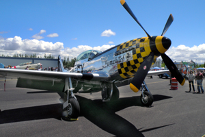 http://www.freedomfair.com/wp-content/uploads/2017/03/P-5120Mustang.jpg
